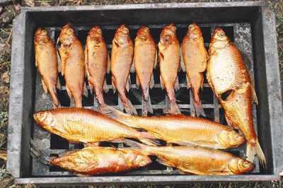 Рыбалка в удовольствие